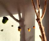 Eikelslinger - regenboog_